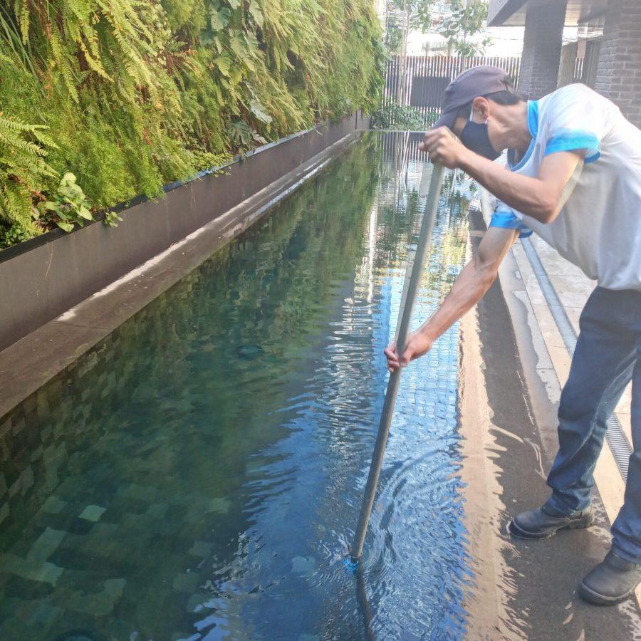 Limpeza de piscina 01